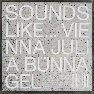 SOUNDS LIKE…VIENNA | Julia Bünnagel