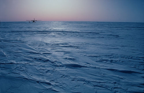 Antarctica: Musical Images from the Frozen Continent