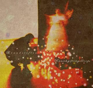 rauschgiftengelloops | Brandstifter