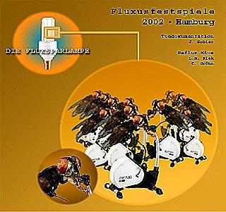 fluxusgames/ design: Katja Heubach/ FFM
