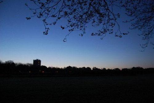The Clearing | Rebecca Joy Sharp & Simon Whetham