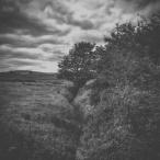 """…between…"" | Robin Parmar & David Colohan"