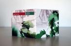 Cicada Dream Band   Pauline Oliveros & David Rothenberg & Timothy Hill