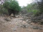 02 Slaveks dry creek