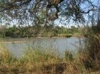 09 Limpopo river 5 Hippo pool