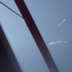 Tentacles | Kg Augenstern